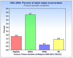 Percentage in US prisons by race